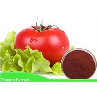 Natural Tomato Extract Lycopene