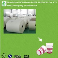 PE Coated Paper for Making Paper Cups