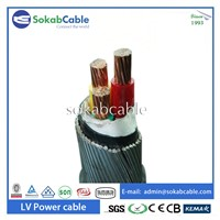 Low Voltage Steel Wire Armored Power Cable