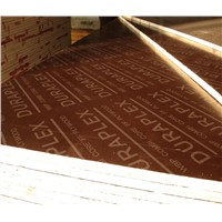 Lowest Price Finger Joint Film Faced Plywood to Dubai UAE Market
