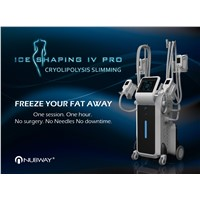 2017 Hot Sale Professional Big Powerful Cryotherapy Facial Beauty Salon Equipment Cool Tech Fat Freezing Machine with Fd