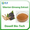 Kosher Ceitified High Quality Siberian Ginseng Extract Eleutheroside(B+E)0.8%