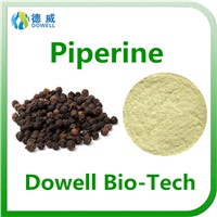 100% Pure Piperine Extract 95%, 98% / Natural Black Pepper Extract Manufacture