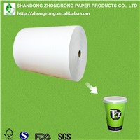 PE Paper for Paper Tea Cup