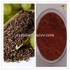 Natural Plant Extract 95% OPC Grape Seed Extract