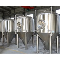 500L Commercial Micro Brewery Fermentation Tank Fermenting