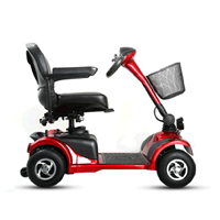 Linix Electric Scooter D103-2 (Four Wheels)