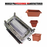 Chinese Mould Supplier Plastic Bonsai Pot Mould Injection Factory In Taizhou
