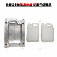 Customer Shape Plastic Jerry Can Blowing Mould for Blowing Machine