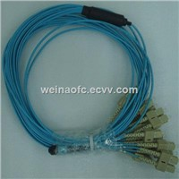 FTTH Fiber Optic Patch Cord MPO-SC 24 Cores Fibers OM3