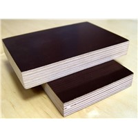 18mm 1220*2440 WBP Glue Phenolic Board Plywood Standard Size Philippines