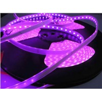 20m/Reel 5050 LED Strip No Volt Drop 24V 60LEDs/m