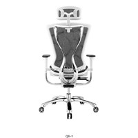 Modern Classic Designed High Back Executive Ergonomic Mesh Office Chair