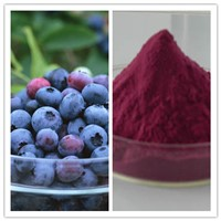 Pure Natural Improve Eyesight Blueberry (Juice) Powder