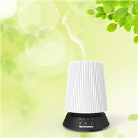 Cool Mist Oil Diffuser LED Humidifier