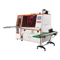 Automatic Servo Screen Printing System