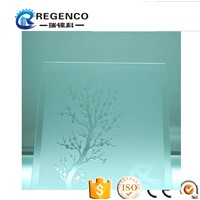 Acid Etched Glass/Decorate Glass/Art Glass