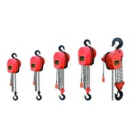 Easy to Operation Manual Chain Hoist / Block