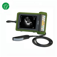 High Brightness LED Diagnostic Vet Ultrasound Machine 10.8'' 1 Probe Connection USB Ports