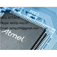 Break Protect of Chip LPC2131| Chip Decyption