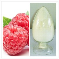 Natural 98% Raspberry Ketone Glucoside (CAS No 38963-94-9)