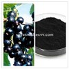 Natural Black Currant Extract with Anthocyanins