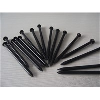 High Quality Galvanized Concrete Nails