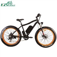 China Electric Bicycle Electric Bike TDE07