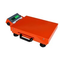 Portable Logistic Scale, High Precision, Easy to Operate