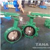 Cast Iron Lug Type Double Shaft Epdm Seat Butterfly Valve with Lever Operated