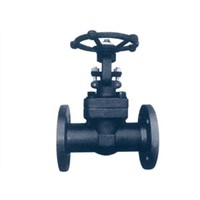Grade Forging Steel Gate Valve