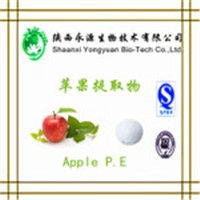 Hot Selling Fruit Juice Powder Apple Dietary Fiber, Apple Powder