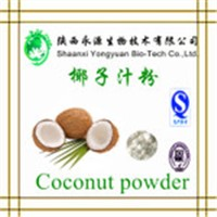 Natural Fruit Juice Coconut Powder, Coconut Milk Powder