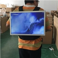 21.5 Inch High Brightness Backpack LCD Advertising Media Player for Outdoor Use