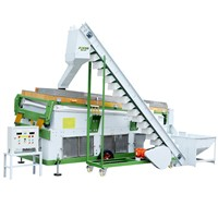 Allspice Seed Cleaning & Grading Machine