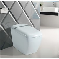 THB 818 One Piece Intelligent Smart Toilet with Warm Seat Auto Open & Close