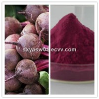 Natural High Quality Beetroot/Beet Root (Juice) Powder