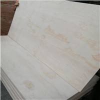 Natural Pine Funiture Plywood from China Manufacture with Wholesale Price. BB/CC. 1220X2440. Excellent Quality