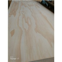 Natural Pine Plywood, Funiture Plywood, B/C. C/D. D/D Wholesale Price.