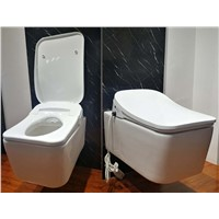 DG560 Wall hung Suspended Type intelligent toilet