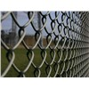 PVC Coated / Galvanized Chain Link Fence