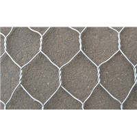 PVC Coated / Galvanized Hexagonal Wire Mesh