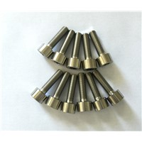 DIN912 Gr2 & Gr5 Titanium Bolts for Industry