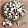 Dried Half Red Lotus Seed Nut Kernel Lotus Extract Paste Manufacture Wholesaler/Distributor Supplier