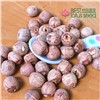 Dried Red Lotus Seed Nut Kernel without Core Plumele Lotus Extract Manufacture Wholesaler/Distributor Exporter Supplier