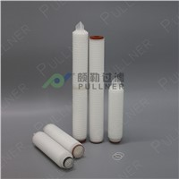 Manufacturer Shanghai PP Pleated Micro Water Filters