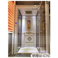 Small Home Elevators German Technician with Metal Sliding Door