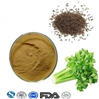 High Quality Natural Plant Extract Celery Seed Extract