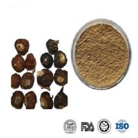 Hot Sale & Best Price Maca Extract