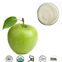 High Quality Pure Powder Form Green Apple Juice